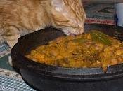 Fasoi bronzon ricetta classica