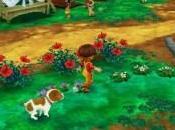 Story Seasons: Trio Towns Panoramica (Nintendo 3DS)
