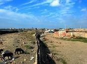 Roma: Idroscalo Ostia
