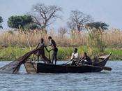 Viaggio Malawi, Africa: sorprendente Liwonde National Park