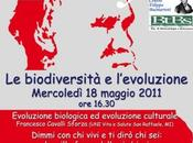 Evolution Cislago (VA)