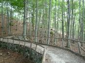 Escursioni piedi sulla Majella Abruzzo, muretti pietra degli antichi pastori