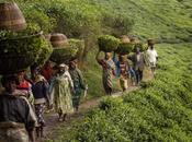 Africa senza pace Rwanda, tortura impunità