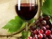 Festa martino sagre vino novello nord italia