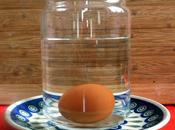 freschezza dell'uovo sommergibile.
