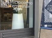 XIII BIENNALE MERLETTO CANTU' Corte Rocco)