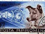 L'anniversario sacrificio Laika sensazionale scoperta riguardo Piramide Giza