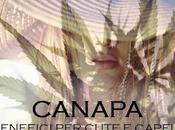 Shampoo alla Canapa: Benefici cute capelli