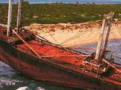 bosco isola Lesina sarà ripulito dalla spazzatura, anche relitto della nave Eden