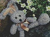 """Recensione sogni Alice. adatto persone serie"""" Elisa Mura"""