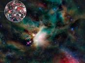 Vita zonzo sulla polvere stelle