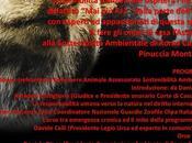 """novembre incontro Roma tematica dimenticare """"MAI PIU' DALLA PARTE DELL'ORSA"""""""