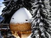 Pigna, casa sull'albero x-lam