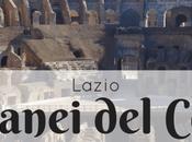 Visita sotterranei Colosseo spettacoli gladiatori