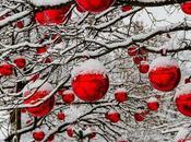 Natale sostenibile, consigli FIMA