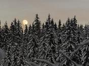 bosco della Digola