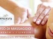 Corso Massaggio Bari: Riflessologia metamerica