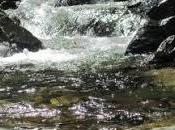Come pietre fiume...