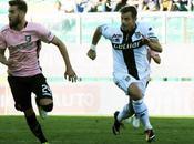 Calciomercato: Palermo, contatti Parma Calaiò