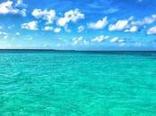 Isola Saona natura, spiaggia relax luogo magico