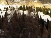 ciaspolate fare Canazei sulle nevi della Fassa