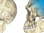 L'origine antica dell'Homo sapiens: trovati resti 300mila anni
