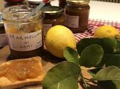 Marmellata limoni gargnano (lago garda)