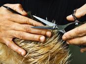 Missione parrucchiere