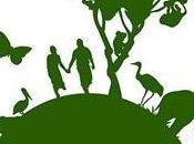 Greenpeace chiede fermare raccolta alghe radioattive