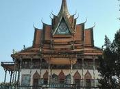 Angelina Cambogia