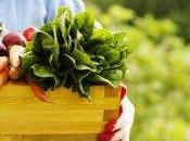 vantaggi frutta verdura direttamente dall'orto