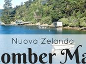 Beachcomber Mail Boat Cruise, Nuova Zelanda: fiordi, delfini posta mare!