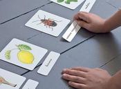 Carte tematiche Montessori: idee