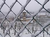 Neve Chianti