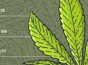 Quanto costa marijuana?