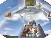 Ponte dell'arcobaleno paradiso degli animali