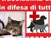 problema della malasanità animale ancora troppo sott...