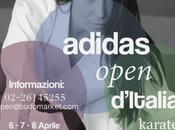 Adidas Open Karatè Italia 2018: offerta hotel Parco Riccione