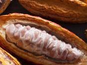 Cucina peruviana: viaggio trasversale territorio, prodotti tradizione