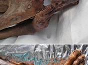 Archeologia. Scoperti antichi tatuaggi mummie egizie: Tori, capre linee misteriose resti umani conservati British Museum risalenti 5.000 anni assoluto restano probabilmente quelli Ötzi, l'Uomo d...