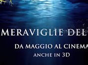 Meraviglie Mare Trailer