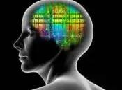 vecchie abitudini cervello impara Scienze