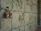 Respirare l'ombra Giuseppe Penone, 1999 Cabiriams