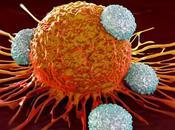 Cancro,la penna individua venti secondi senza biopsia
