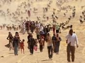 migranti climatici