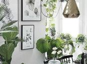 CASA: Arredare piante.