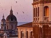 Catania, dove osano rondini
