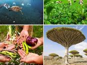 Giornata della biodiversità 2018