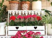 decorazione vasi gerani