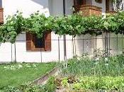 Adotta orto! Mezzano Primiero sono circa 300, ogni abitanti ammira lungo percorso Cataste&Canzei, cataste artistiche legna quali diventato famoso questo incantevole borgo trentino.